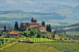 Aldo-Disorbo-Tuscany-Vineyard-Zrylw